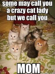 cat lady2.jpg