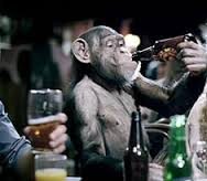 monkey with beer.jpg